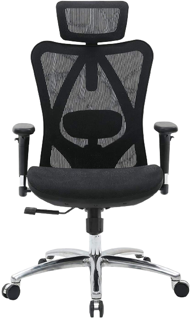 sihoo ergonomic office chair details